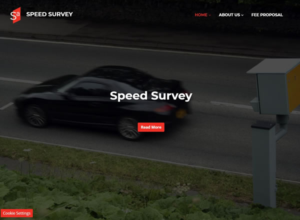 Speed Survey Website